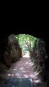 Monasterio de Piedra5